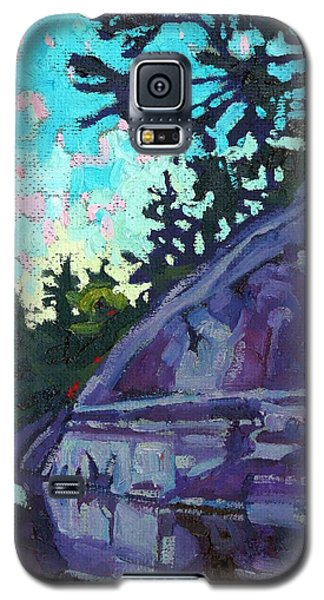 Levels Galaxy S5 Case