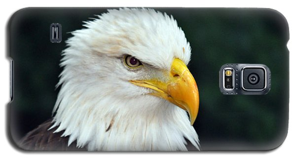 Galaxy S5 Case featuring the photograph Liberty Watching Two by Teresa Blanton