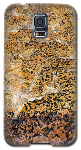 Galaxy S5 Case featuring the photograph Lichen Abstract, Bhimbetka, 2016 by Hitendra SINKAR