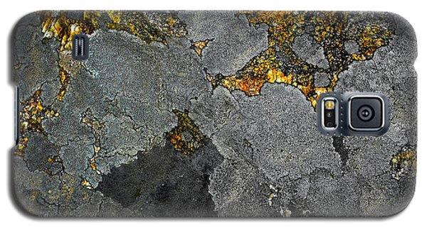 Lichen On Granite Rock Abstract Galaxy S5 Case