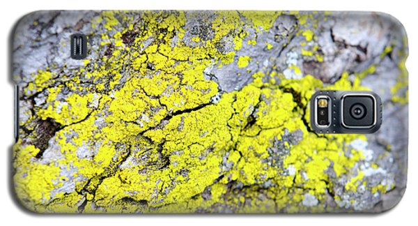 Galaxy S5 Case featuring the photograph Lichen Pattern by Christina Rollo