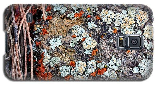 Lichen With Pine Galaxy S5 Case