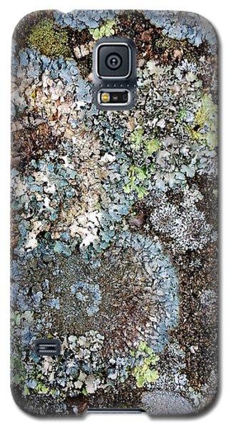 Lichens Galaxy S5 Case