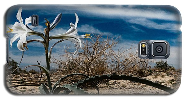 Life Amoung The Weeds Galaxy S5 Case