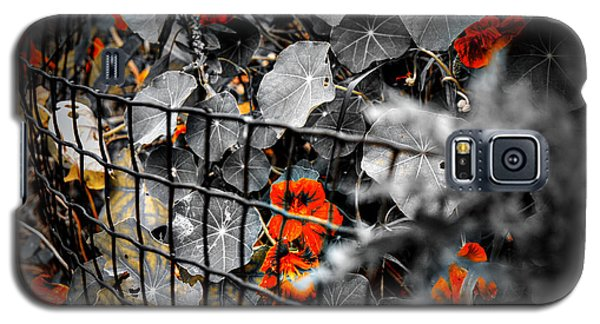 Life Behind The Wire Galaxy S5 Case