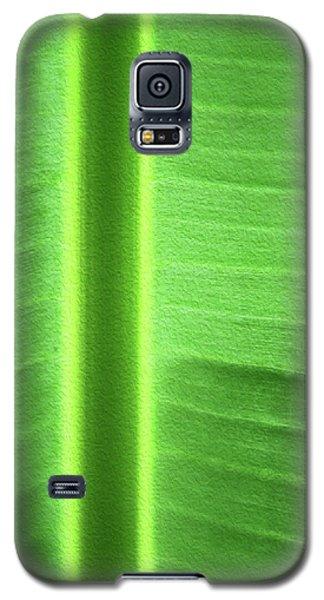 Life Lines Galaxy S5 Case