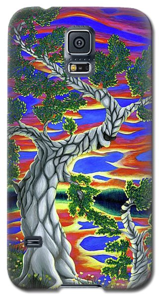 Life Of Trees Galaxy S5 Case