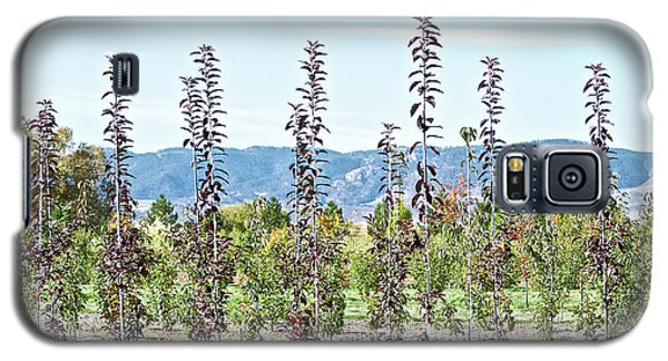 Life On A Tree Farm-foothills View #1 Galaxy S5 Case