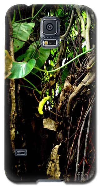 Galaxy S5 Case featuring the photograph Life by Rushan Ruzaick