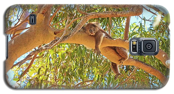 Galaxy S5 Case featuring the photograph Life's Hard, Yanchep National Park by Dave Catley