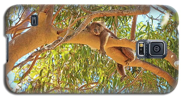Life's Hard, Yanchep National Park Galaxy S5 Case by Dave Catley