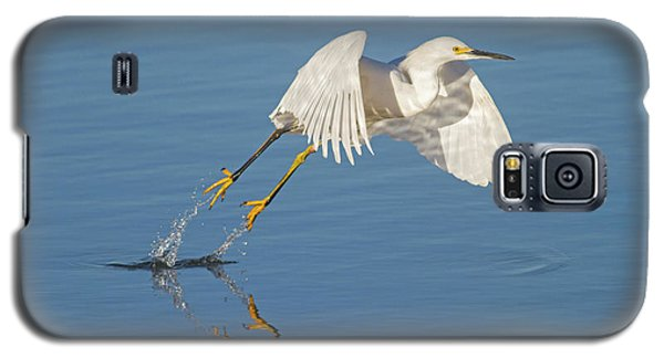 Lift Off- Snowy Egret Galaxy S5 Case