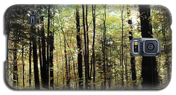 Galaxy S5 Case featuring the photograph Light Among The Trees by Felipe Adan Lerma