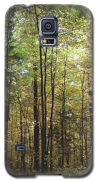 Light Among The Trees Vertical Galaxy S5 Case by Felipe Adan Lerma