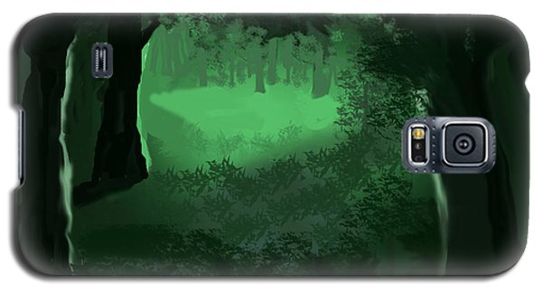 Light In The Forest Galaxy S5 Case by Walter Chamberlain