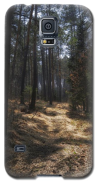 Light In The Wood Galaxy S5 Case