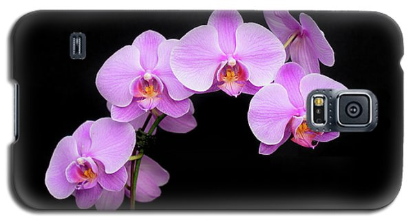 Light On The Purple Please Galaxy S5 Case
