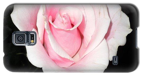 Light Pink Rose Galaxy S5 Case