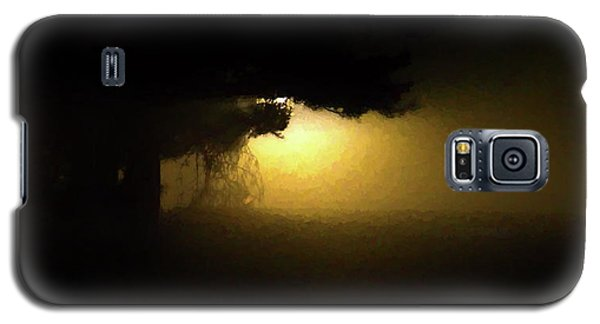 Light Through The Tree Galaxy S5 Case