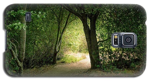 Light Through The Tree Tunnel Galaxy S5 Case