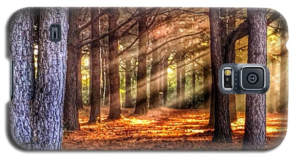 Galaxy S5 Case featuring the photograph Light Thru The Trees by Sumoflam Photography