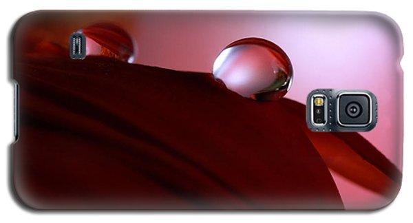 Light Water Drop On Dark Petals Galaxy S5 Case by Angela Murdock