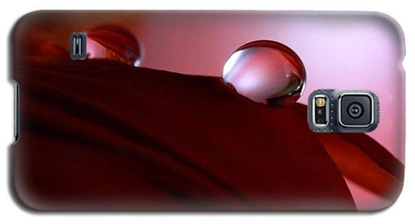 Light Water Drop On Dark Petals Galaxy S5 Case