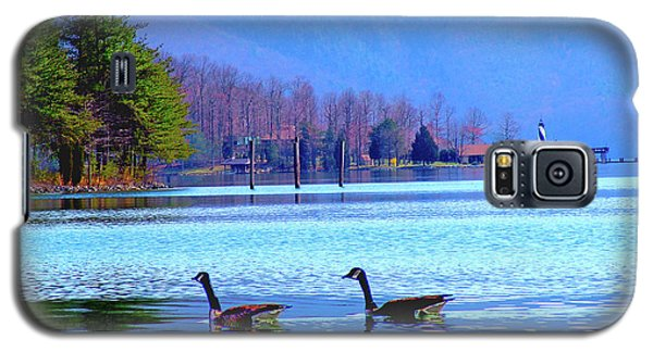 Lighthouse Geese, Smith Mountain Lake Galaxy S5 Case