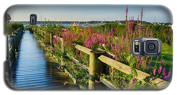 Lighthouse Path Galaxy S5 Case by Mark Miller