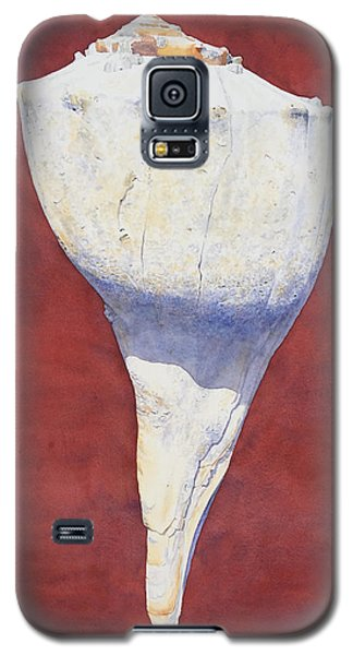 Lightning Whelk Conch II Galaxy S5 Case