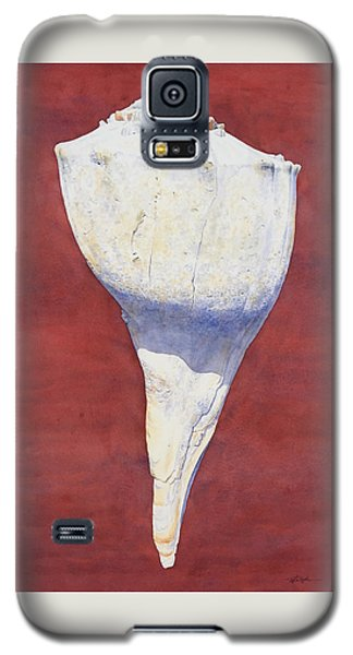 Lightning Whelk Conch II Galaxy S5 Case