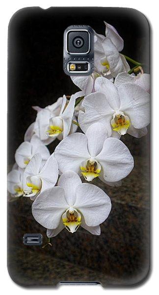 Like A Dove Galaxy S5 Case