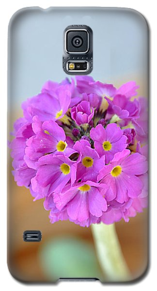 Single Pink Flower Galaxy S5 Case by Marion McCristall