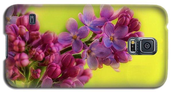 Lilac Blooms Galaxy S5 Case by Gabriela Neumeier