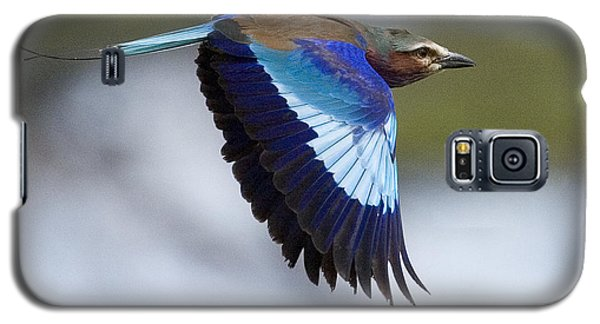 Lilac-breasted Roller-signed Galaxy S5 Case