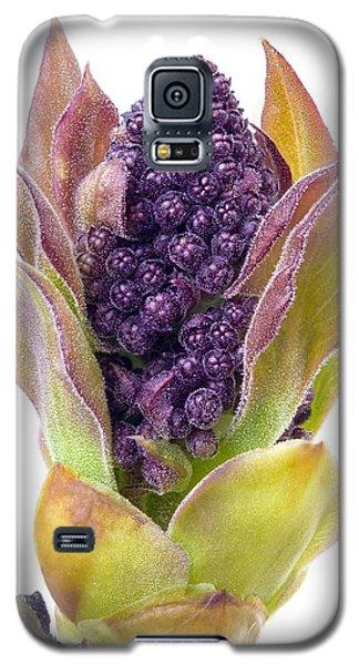 Lilac Bud Galaxy S5 Case