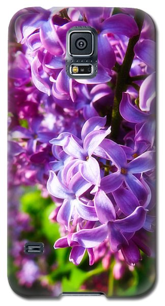 Galaxy S5 Case featuring the photograph Lilac In The Sun by Julia Wilcox
