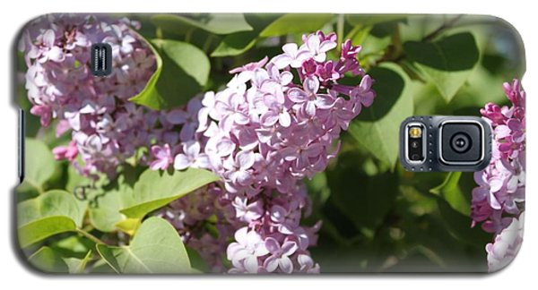 Galaxy S5 Case featuring the photograph Lilacs 5544 by Antonio Romero
