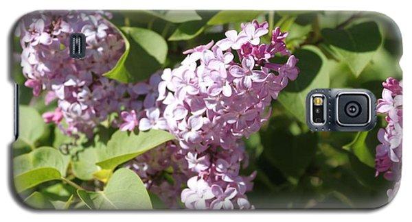 Lilacs 5544 Galaxy S5 Case
