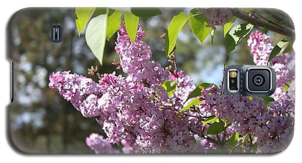 Lilacs 5545 Galaxy S5 Case