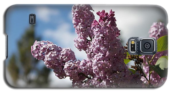 Galaxy S5 Case featuring the photograph Lilacs 5547 by Antonio Romero