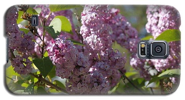 Lilacs 5548 Galaxy S5 Case
