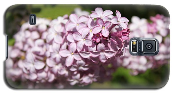 Galaxy S5 Case featuring the photograph Lilacs 5549 by Antonio Romero