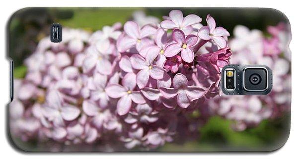 Lilacs 5549 Galaxy S5 Case