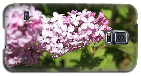 Galaxy S5 Case featuring the photograph Lilacs 5550 by Antonio Romero
