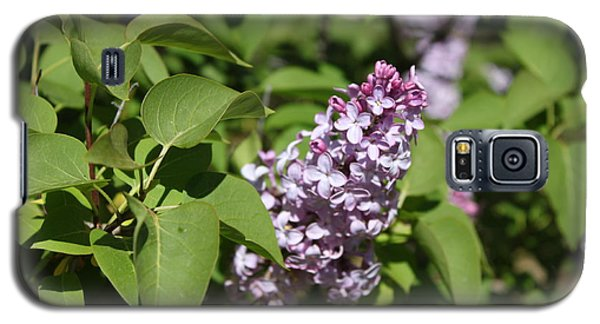 Galaxy S5 Case featuring the photograph Lilacs 5551 by Antonio Romero