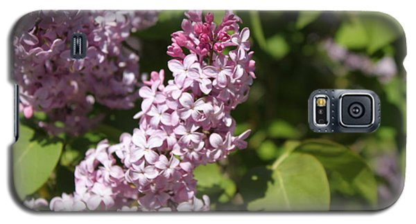 Galaxy S5 Case featuring the photograph Lilacs 5552 by Antonio Romero