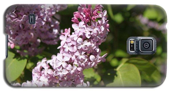 Lilacs 5552 Galaxy S5 Case