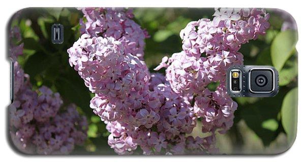 Lilacs Galaxy S5 Case