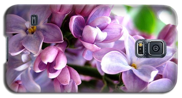 Lilacs Galaxy S5 Case